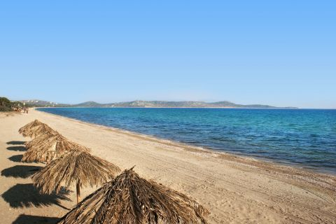 Schinias beach.