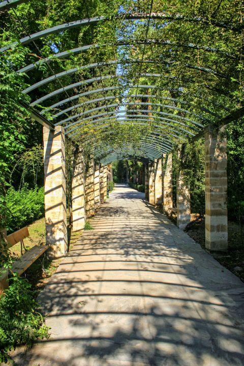 Exploring the beautiful corners of the National Garden.