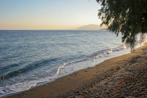 Sidonia beach.