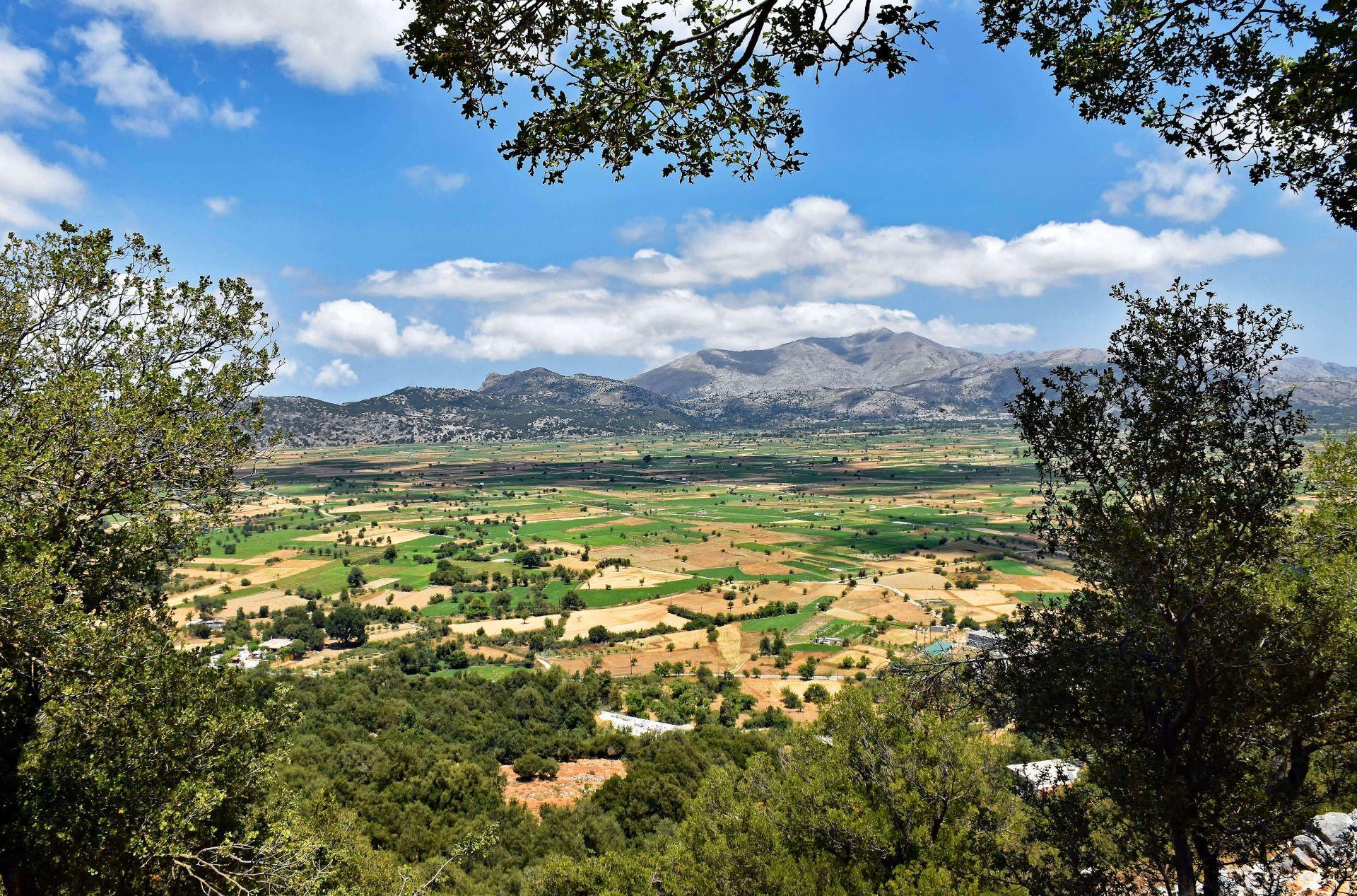 Lassithi: Plateau