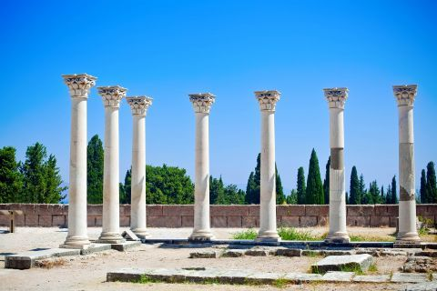 Restored columns that belong to the Ionic Temple of Apollo (II Century BC).
