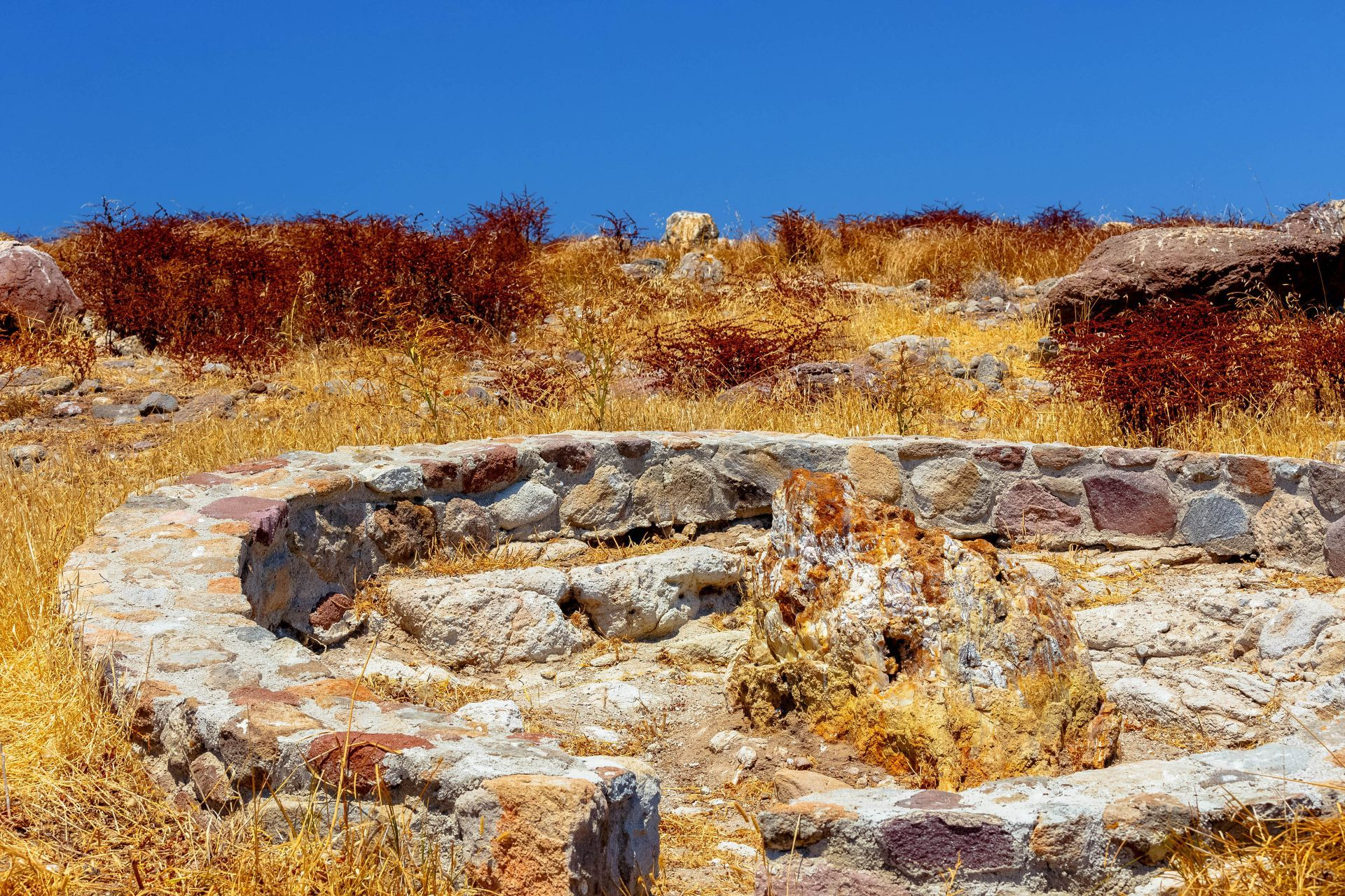 Lesvos island: Petrified forest