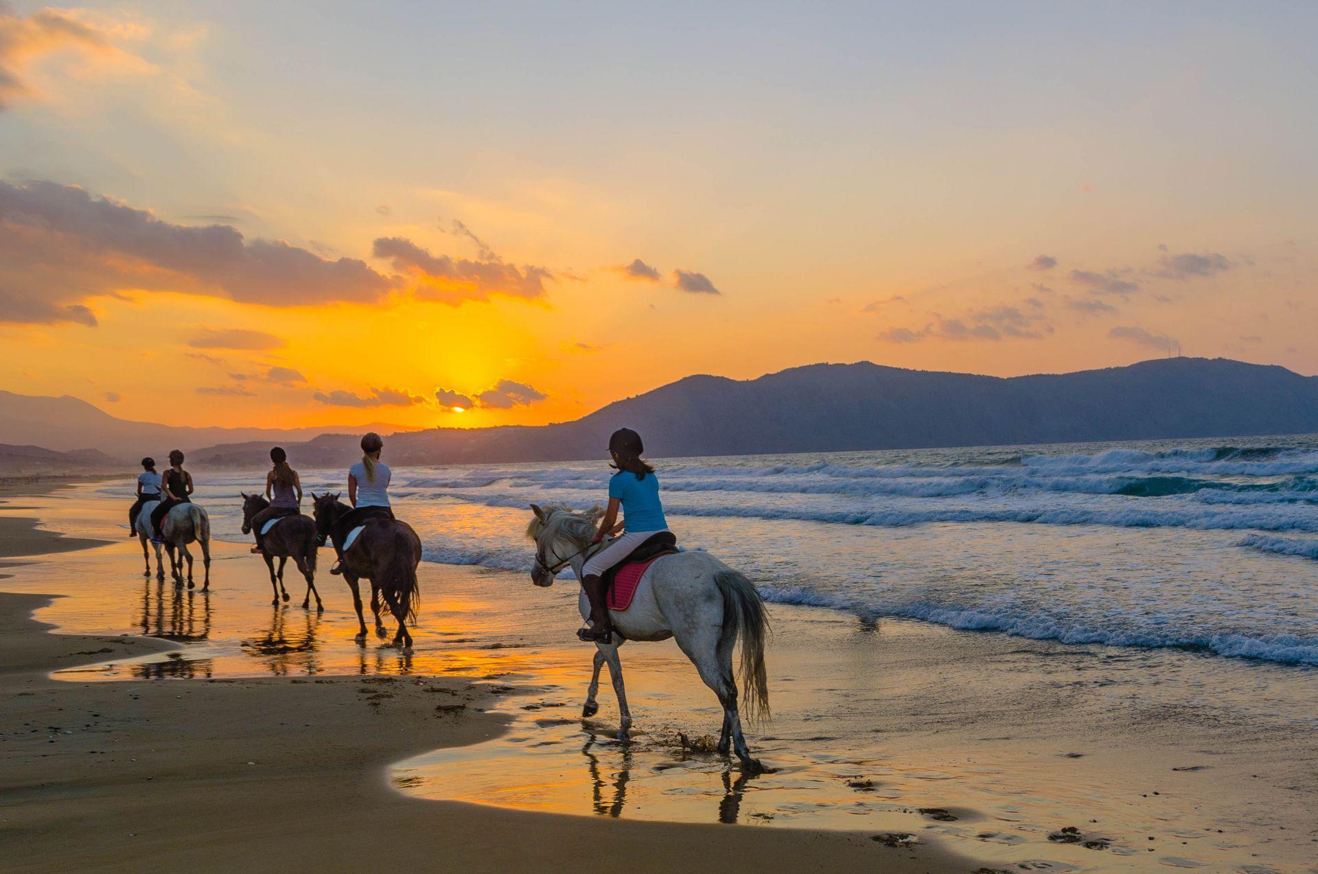 Greece Horseback Riding: Best clubs - Greece Sports   Greeka.com