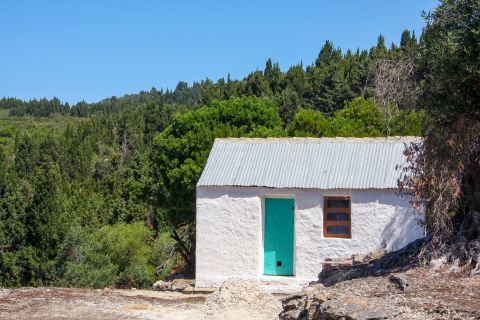 A small, whitewashed house in Ano Panta, surrounded by dense vegetaton