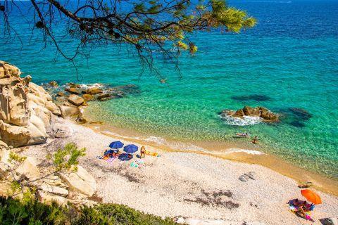 Fava beach, Halkidiki