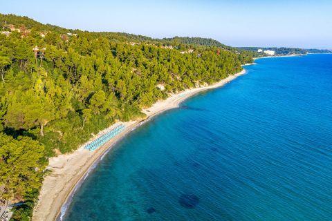 Dense vegetation and blue waters, Kriopigi beach.Dense vegetation and blue waters, Kriopigi beach.Dense vegetation and blue waters, Kriopigi beach.Dense vegetation and blue waters, Kriopigi beach.Dense vegetation and blue waters, Kriopigi beach.