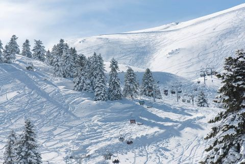 Activities on the snow, Kalavryta