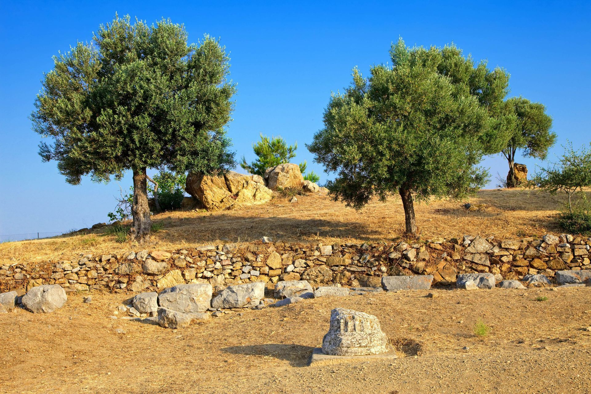 Poros island: Temple of Poseidon