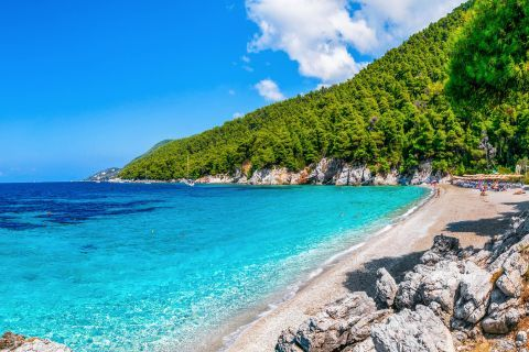 Kastani beach is surrounded by dense vegetation