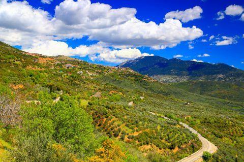 Majestic nature on Mount Parnassos