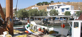 Picturesque harbor of Moutsouna
