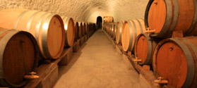 Wineries and famous wines