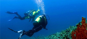 Explore the diving spots of Halkidiki