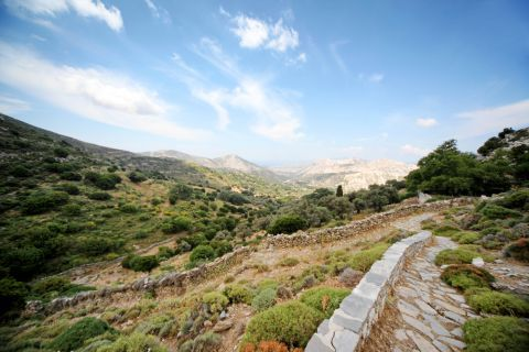 Cave of Zas: Wide plains with rich flora at the Cave of Zas