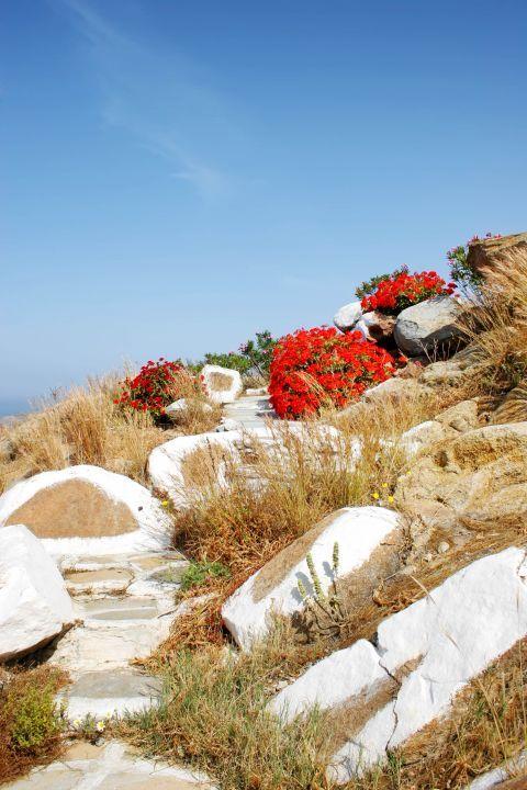 Panagia Gremiotissa: The natural surroundings of the church