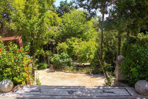 Rodini Park: Splendid nature.