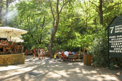 There is also a cozy taverna where one can relax and unwind in the lap of nature.