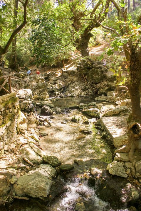 In this beautiful park there are seven sparkling springs and a few rivers, which never run out of the water.