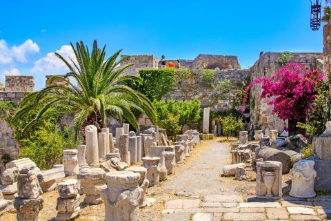 Nerantzia Castle: Beautiful flowers and trees are found near the remains of Neratzia Castle.