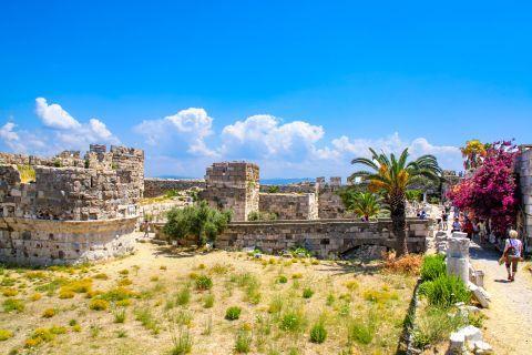 Nerantzia Castle: Remains of Neratzia Castle and short vegetation.