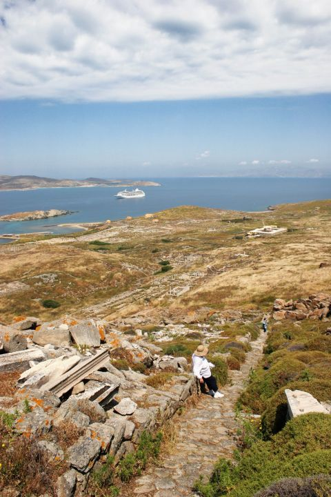 The ancient site of Delos, an unspoiled place with some green spots