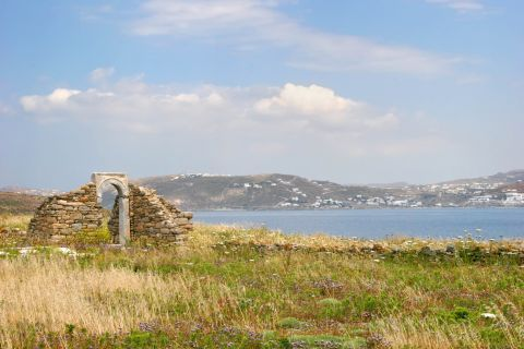 The nature and ancient ruins of Delos