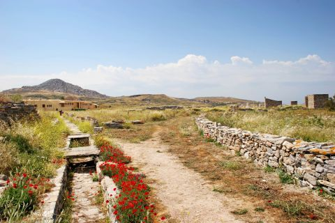 The unspoiled site of Delos