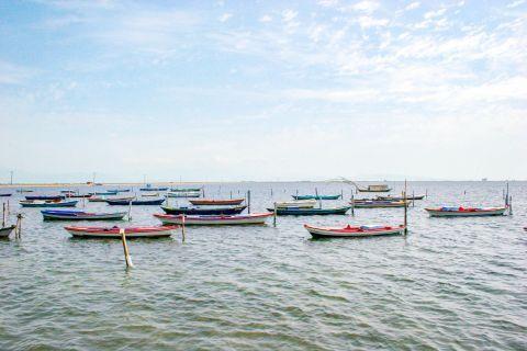 Sea Lake: Some fishing boats.