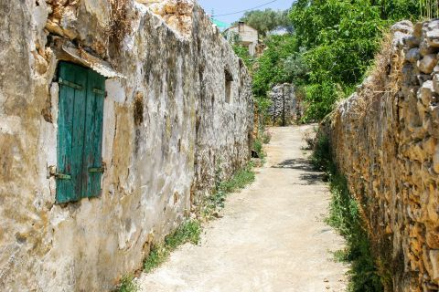 Exo Hora: Old buildings, surrounded by vegetation.