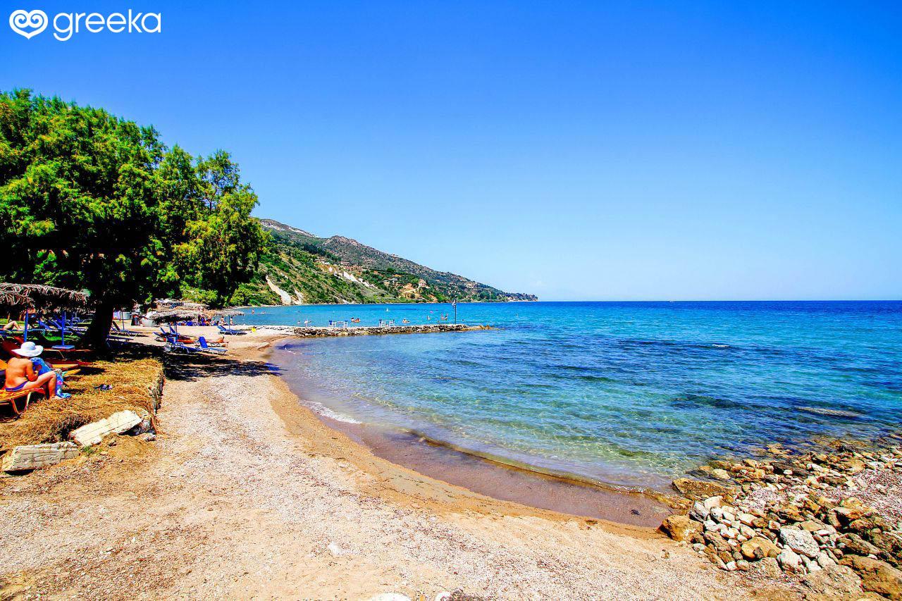 Закинф — роскошный цветок Средиземноморья | 853x1280