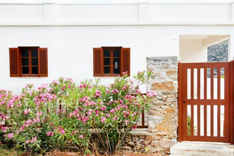 Arkesini: A whitewashed house with colorful details and beautiful flowers