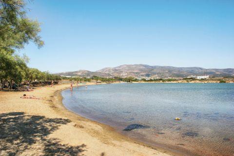 Agios Spiridonas Beach: Agios Spiridonas beach