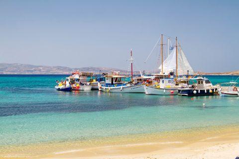 Agia Anna: Fishing boats