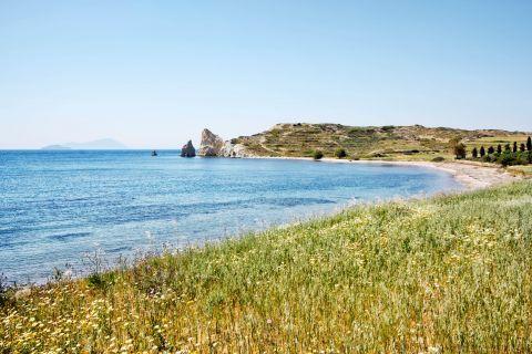 Mavrospilia: Lush vegetation