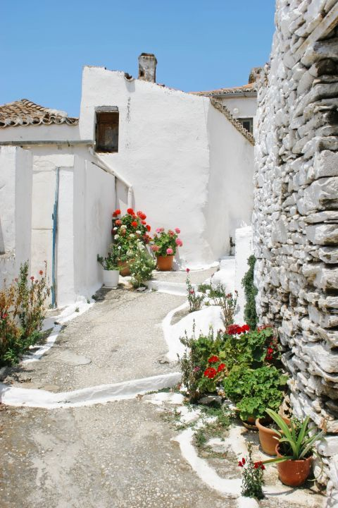 Driopida: The whitewashed houses of the village have tiled slanting roofs.