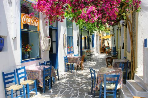 Driopida: A local eatery
