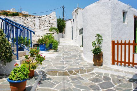 Driopida: The picturesque alleys of Driopida are too narrow for vehicles.