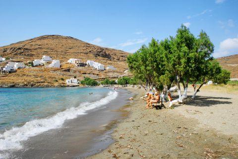 Episkopi: Sandy beach with trees