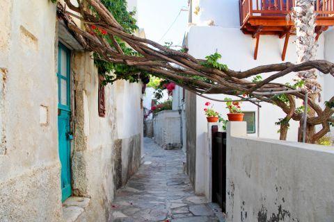 Town: A narrow path in Naxos Town