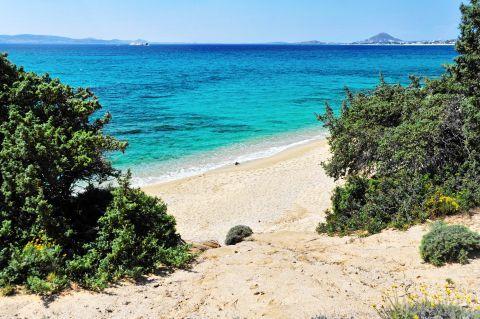 Orkos: Landscape of Orkos beach