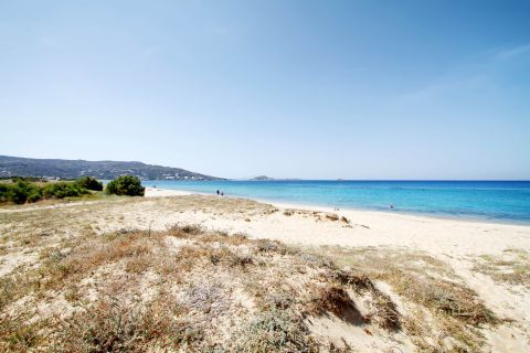 Plaka: The sandy beach of Plaka
