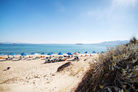 Plaka: View of Plaka beach