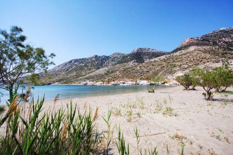Kamares beach: Sandy beach with short vegetation