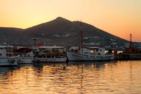 Naoussa: Fishing boats