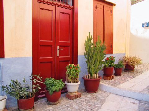 Ano Syros: A red door with beautiful flower pots