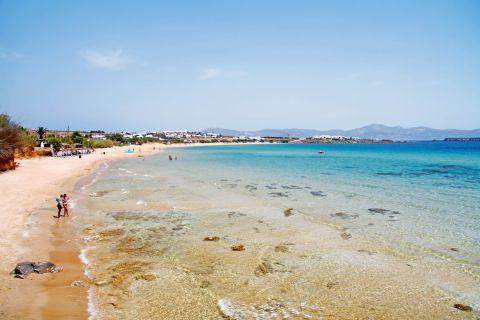 Golden Beach: The Golden Beach