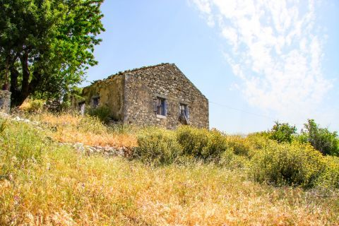 Exogi: A building, constructed with stone, surrounded by vegetation.