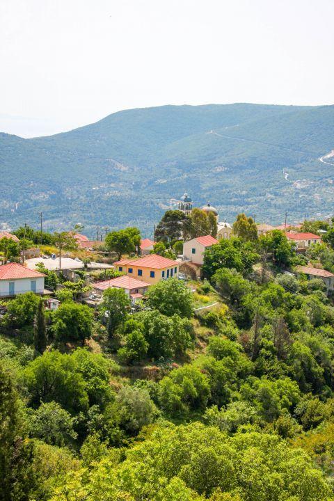 Exogi: A settlement full of green spots.