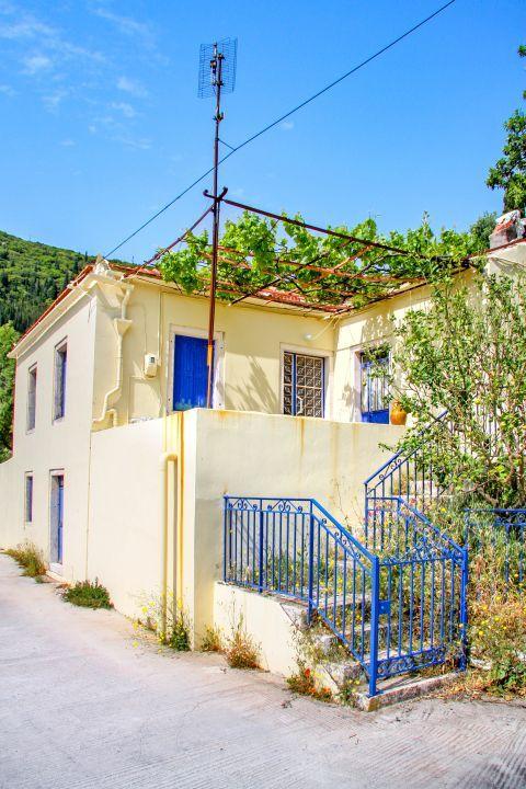 Exogi: Local houses.