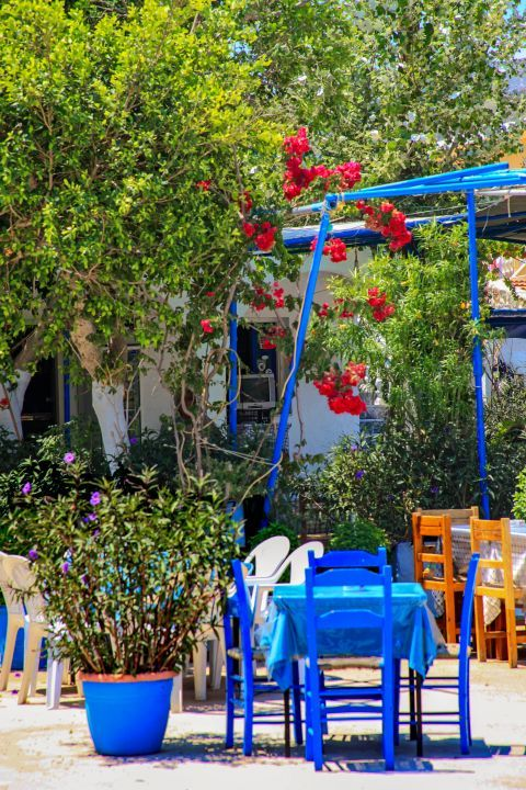 Vathy: Blue colored chairs and tables, surrounded by beautiful flowers.